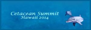 Conférence de Frédérique Pichard au Cetacean Summit