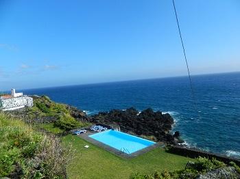 Découverte dauphins Açores