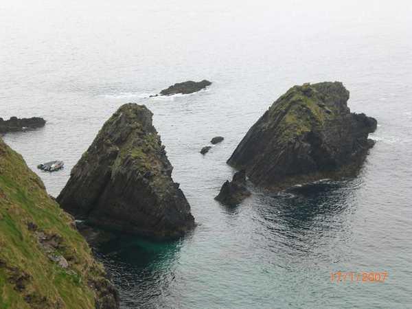 Rencontrer dauphin Irlande
