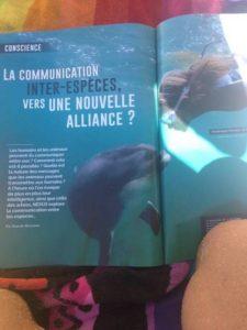 communication inter espèce dauphin