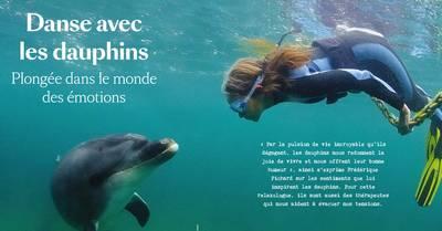 Voyage avec les dauphins et les balines et Santé