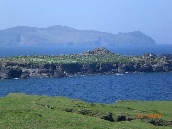 Organiser voyage Irlande dauphin